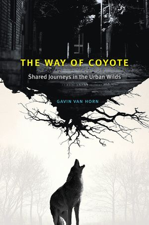 THE WAY OF COYOTE *