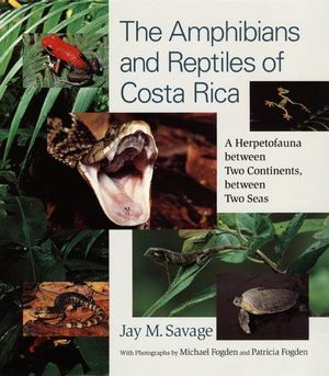 THE AMPHIBIANS AND REPTILES OF COSTA RICA *