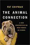THE ANIMAL CONNECTION: *