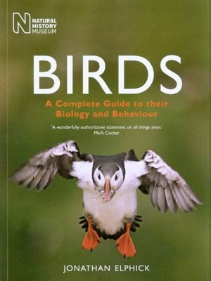 BIRDS:  *