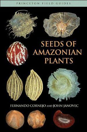 SEEDS OF AMAZONIAN PLANTS *