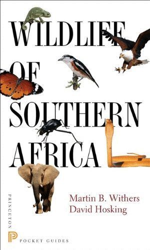 WILDLIFE OF SOUTHERN AFRICA  *