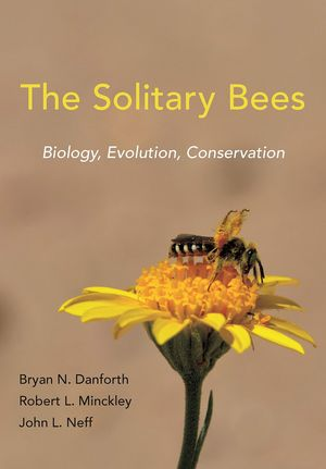 THE SOLITARY BEES *