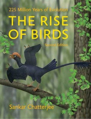 THE RISE OF BIRDS: *
