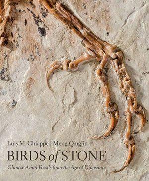 BIRDS OF STONE: *