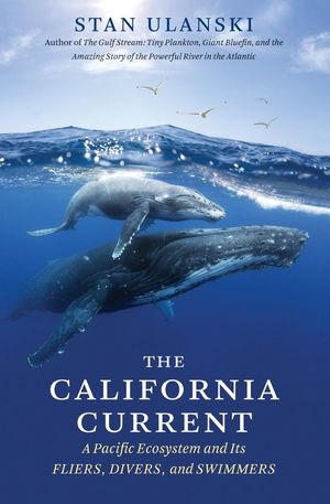 THE CALIFORNIA CURRENT *