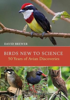 BIRDS NEW TO SCIENCE *