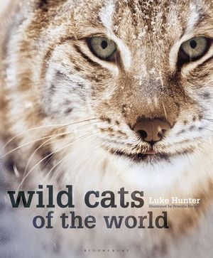 WILD CATS OF THE WORLD  *
