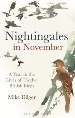 NIGHTINGALES IN NOVEMBER *