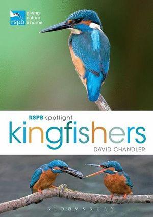 RSPB SPOTLIGHT KINGFISHERS *