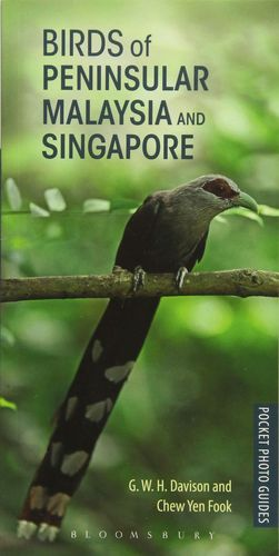 BIRDS OF PENINSULAR MALAYSIA AND SINGAPORE  *