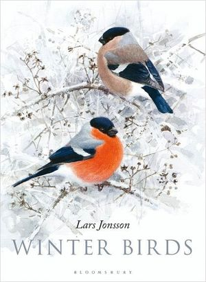 WINTER BIRDS *