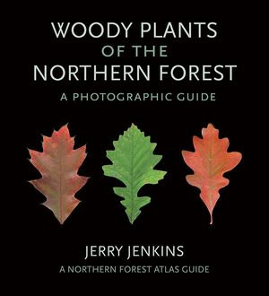 WOODY PLANTS OF THE NORTHERN FOREST: *