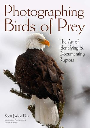 PHOTOGRAPHING BIRDS OF PREY *