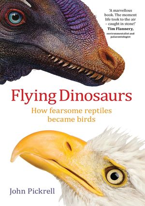 FLYING DINOSAURS *