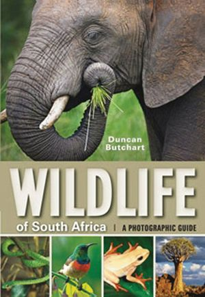 WILDLIFE OF SOUTH AFRICA *