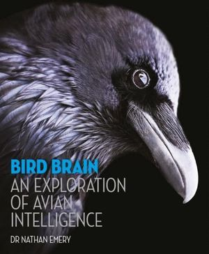 BIRD BRAIN: AN EXPLORATION OF AVIAN INTELLIGENCE *