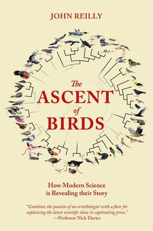 THE ASCENT OF BIRDS *