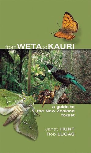 FROM WETA TO KAURI. A GUIDE TO THE NEW ZEALAND FOREST  *