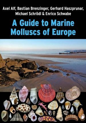 A GUIDE TO MARINE MOLLUSCS OF EUROPE *