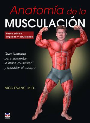 ANATOMÍA DE LA MUSCULACIÓN *