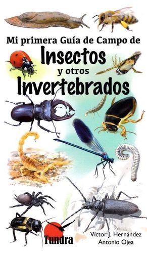 MI PRIMERA GUIA DE CAMPO DE INSECTOS Y OTROS INVERTEBRADOS *
