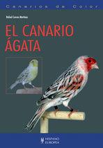 EL CANARIO ÁGATA *