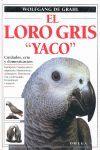 EL LORO GRIS 'YACO' *