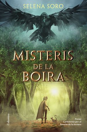 MISTERIS DE LA BOIRA *