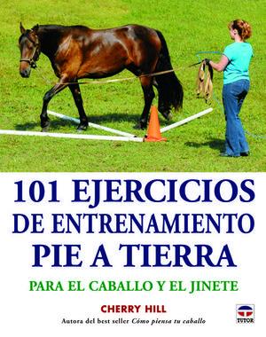 101 EJERCICIOS DE ENTRENAMIENTO PIE A TIERRA *