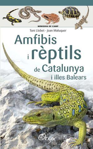 AMFIBIS I REPTILS DE CATALUNYA