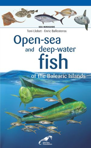 OPEN-SEA AND DEEP-WATER FISH OF THE BALEARIC ISLANDS *