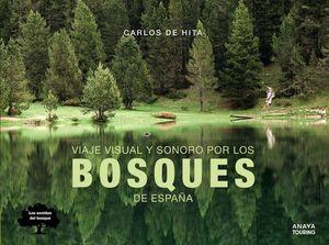 VIAJE VISUAL Y SONORO POR LOS BOSQUES DE ESPAÑA *