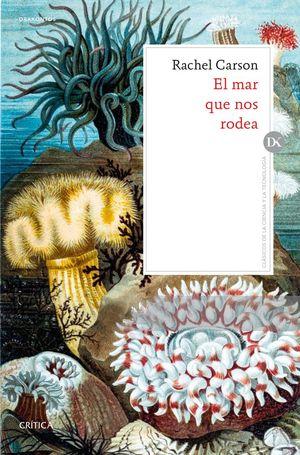 EL MAR QUE NOS RODEA *