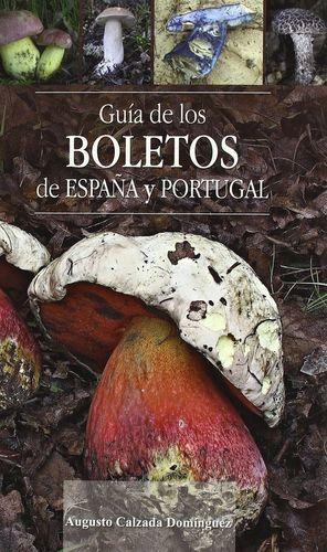 GUÍA DE LOS BOLETOS DE ESPAÑA Y PORTUGAL *