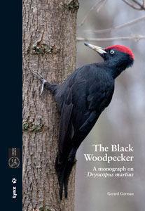 THE BLACK WOODPECKER *