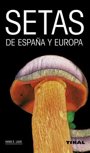 SETAS DE ESPAÑA Y EUROPA *
