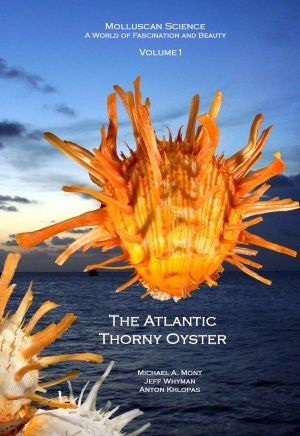 THE ATLANTIC THORNY OYSTER *